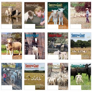 1 Year Subscription to Sheep & Goat